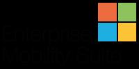 logo microsoft enterprise