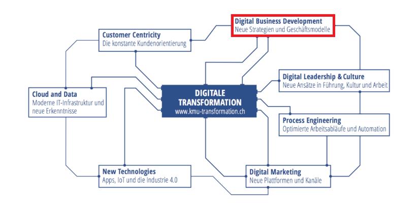 Geschäftsmodelle, Handlungsfelder der Digitalisierung, Digitaler Reifegrad, IT Dienstleistungen